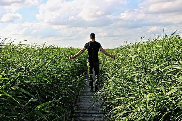 Blähbauch loswerden - ein Spaziergang hilft